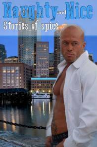 Model John Quinlan Naughy and Nice Book Cover