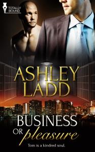 Business Pleasure - Book Cover