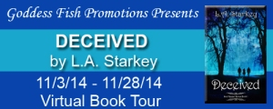 FS Deceived Tour Banner copy