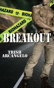 Breakout_w9551_med 4