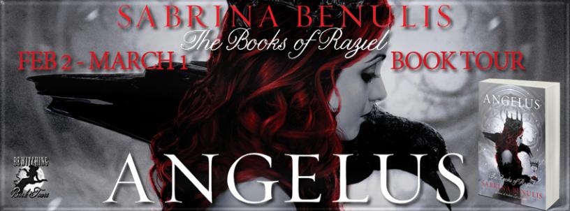 Angelus Banner 851 x 315