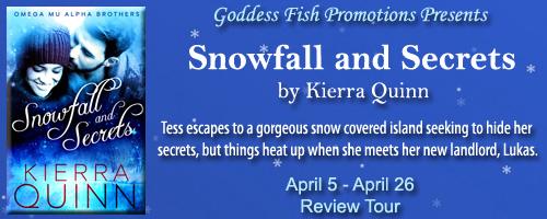 Reviews_SnowfallAndSecrets_Banner copy