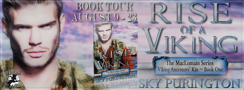 Rise of a Viking Banner 851 x 315
